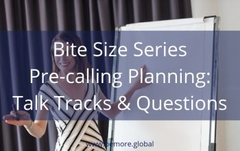 V Bite Size 2 Pre-Calling Planning Talk Tracks & Questions