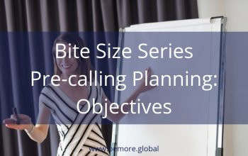 V Bite Size 4 Pre-Calling Planning Objectives