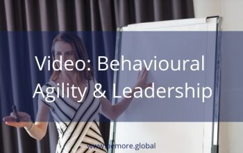 V1 Behavioural Agility & Leadership