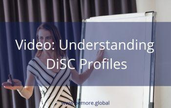 V6 Understanding DiSC Profiles